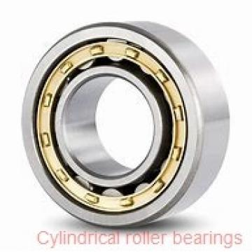30 mm x 72 mm x 19 mm  ISB NU 306 cylindrical roller bearings