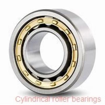 Toyana NH2319 E cylindrical roller bearings