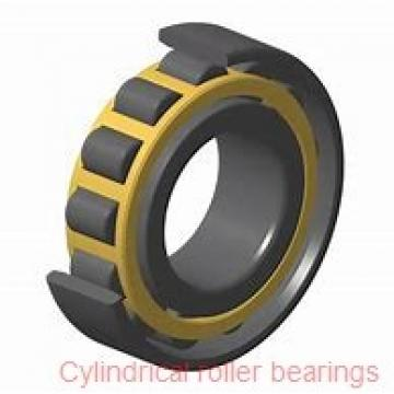30 mm x 55 mm x 19 mm  NSK NN3006MB cylindrical roller bearings
