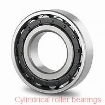 100 mm x 180 mm x 46 mm  NKE NJ2220-E-M6 cylindrical roller bearings